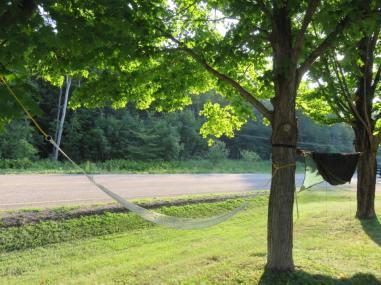 hammocks at Esmonde